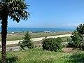 Trabzon Jun 2020 15 32 28 679000.jpeg