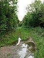 Track to Themelthorpe - geograph.org.uk - 569057.jpg