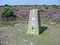 Trig Pillar at centre of square - geograph.org.uk - 39504.jpg