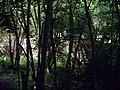 Trunečkův mlýn od jihu (02).jpg