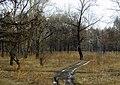 Tsentralnyy rayon, Krasnoyarsk, Krasnoyarskiy kray, Russia - panoramio (38).jpg