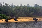 U.S. Marines assigned to the 31st Marine Expeditionary Unit, embarked aboard the amphibious dock landing ship USS Tortuga (LSD 46), conduct a simulated amphibious assault off the coast of Malaysia June 21, 2013 130621-N-PD773-573.jpg