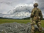 U.S. paratroopers descend upon Hohenfels Drop Zone.jpg