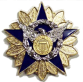 Auxiliary National Staff Badge