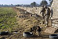 US Navy 090117-M-5041C-001 A Navy K-9 handler guides his dog in a search as Marine Sgt. Graham Johnston leads the way.jpg