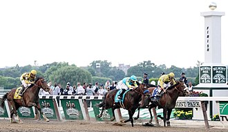 2012 Belmont Stakes - Finish of the 2012 Belmont Stakes: Union Rags (far right) finished first followed by Paynter and Atigun.