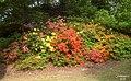 Valley Gardens (5679836455).jpg