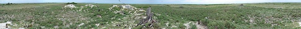 360 degree panoramic view of the low-lying landscape of Eastern Island, Midway Atoll