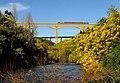 Viaducto del Malleco (20530905520).jpg
