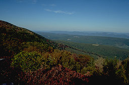 View From Dolly Sods.JPG