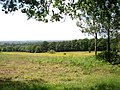 View from Santery Hill Wood - geograph.org.uk - 472049.jpg