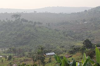 Southern Congolian forest–savanna mosaic