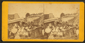 View of a train wreck on the Maine Central Railroad that occurred August, 1871, near Bangor, Maine, from Robert N. Dennis collection of stereoscopic views.png