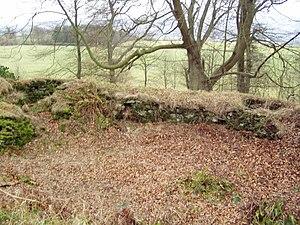 Coldoch Broch - Interior of Coldoch Broch