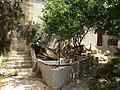 Villa Ignatius 50.jpg