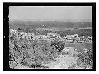 Village of Seidnaya? LOC matpc.13419.jpg
