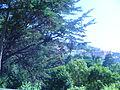 Vista de Sintra (4).JPG