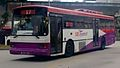 Volvo B10M MkIV Duple Metsec at Pasir Ris Interchange.jpg