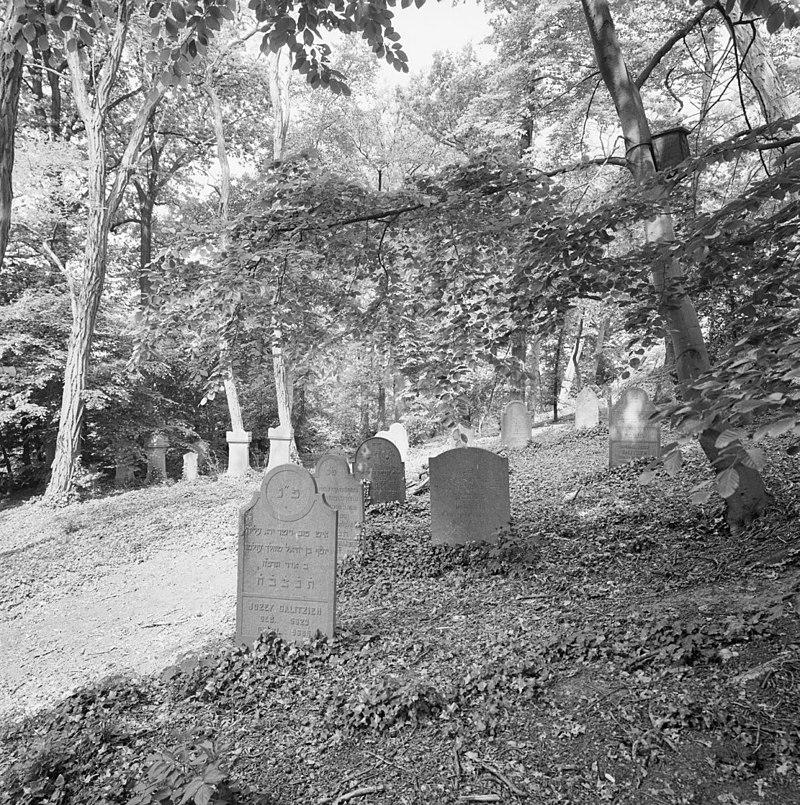 https://upload.wikimedia.org/wikipedia/commons/thumb/6/61/Voormalige_Joodse_begraafplaats_met_grafstenen_te_Terborg_-_Terborg_-_20345247_-_RCE.jpg/800px-Voormalige_Joodse_begraafplaats_met_grafstenen_te_Terborg_-_Terborg_-_20345247_-_RCE.jpg