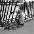 Vrouw met palmtakken voor de hekken van de Madeleine, Bestanddeelnr 254-0522.jpg