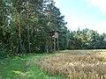 WILCZE ŁUGI lato 96 - panoramio.jpg