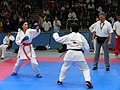 WKA World Championship 2011 092.JPG