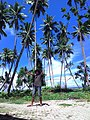 WTC Beach Waisai Raja Ampat Papua Barat Indonesia - panoramio.jpg
