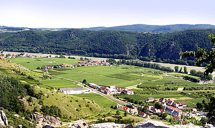 The French occupied the vineyards in the floodplain and were surrounded by Russian troops emerging from the defiles of the mountains. Another column of Russians approached Durenstein from the south. Wachau Valley Durnstein.jpg