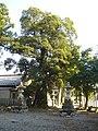 Wakae Jinja Gifu2008-6.jpg