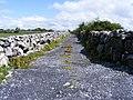 Walled farm track - geograph.org.uk - 1314543.jpg