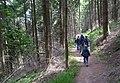 Wanderweg bei Weyher (Pfalz).jpg