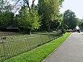 Warszawa zoo wybieg wigonia (wikunii)3.JPG