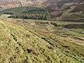 Water Head hillside towards New Glendorch - geograph.org.uk - 688458.jpg