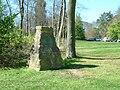 Wendover Woods.jpg