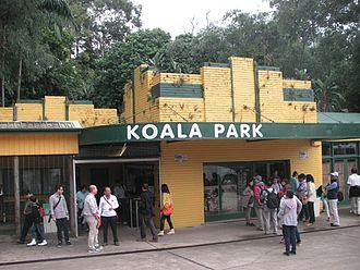 West Pennant Hills, New South Wales - Koala Park