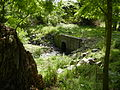 West Branch, Indian Creek, Culvert, Morris Park, Philadelphia.jpg