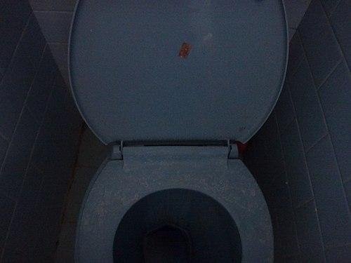 Western Toilet.jpg