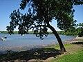 Wethersfield Cove - 3.JPG