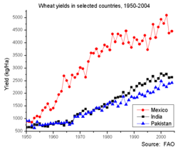 Wheat yields in selected countries, 1951-2004.png