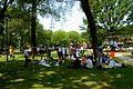 Wikimania Takes Manhattan Picnic.jpg