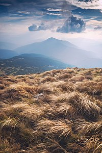 Windy Hoverla.jpg