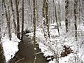 Winter-Snow-Stream - West Virginia - ForestWander.jpg