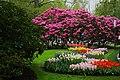 Wiosenny ogród Keukenhof w Lisse-Holandia. - panoramio (8).jpg