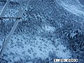 Wolf radio tracking, Denali, 20032003 (a8dfdc50-f203-438c-835d-2bd2f9a3e70f).jpg