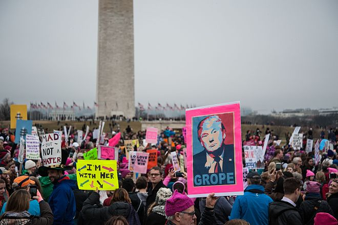 Women's March Washington, DC USA 41.jpg