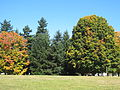 Woodstock Park, Portland, OR - October 2012.JPG