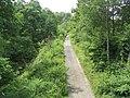 Wyre Forest.jpg