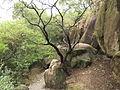 Xiamen - Jinbang Park - DSCF9898.JPG