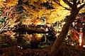 Yuushien Garden at night, Matsue City; November 2014 (01).jpg