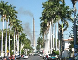 View of a Zacatepec de Hidalgo street lined with palm trees, with the sugar mill in the distance